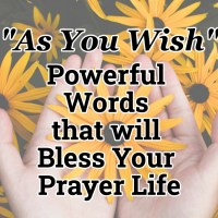 """As You Wish"" - Powerful Words that will Bless Your Prayer Life"