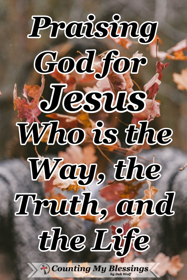 "Jesus is God's greatest gift - I'm pausing to thank and praise God for Jesus - the Great ""I AM"" the Way, the Truth that sets us free, & the Everlasting Life. #Thanksgiving #Hope #Faith #ForeverLife #CountingMyBlessings #WWGGG"