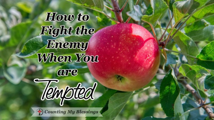 It's a blessing to know Jesus was tempted like we are but He also showed us how to fight the enemy without giving in to sin. With His help, we can fight, too. #BibleStudy #FightTemptation #God'sWord #CountingMyBlessings #WWGGG