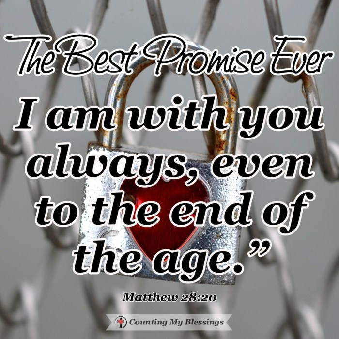 In Matthew 28 we have a record of Jesus' promise that I believe is the best promise ever. A promise that makes it possible to say - it is well with my soul. #BibleStudy #Prayer #JesusPromise #CountingMyBlessings #BlessingBloggers #WWGGG