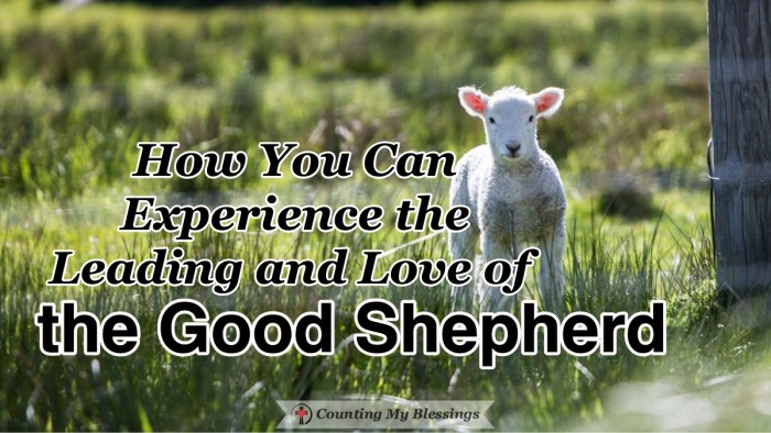 Jesus called Himself the Good Shepherd. His leading and love gently guide, guard, and protect us to live in a world that is full of dangers and temptations. #Faith #Jesus #GoodShepherd #BibleStudy #CountingMyBlessings #WWGGG