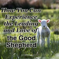 How You Can Experience the Leading and Love of the Good Shepherd
