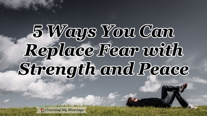Being afraid makes life miserable but by God's grace, there are ways to replace fear and live with peace and strength when we trust His promises. #Jesuspromises #Faith #Hope #God'speace #CountingMyBlessings #WWGGG