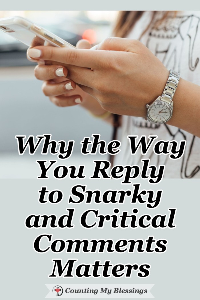 It's so tempting to reply to snarky and critical comments with anger and retaliation but what if there's a better way, a way that builds trust and respect. #criticism #snarky #comments #CountingMyBlessings