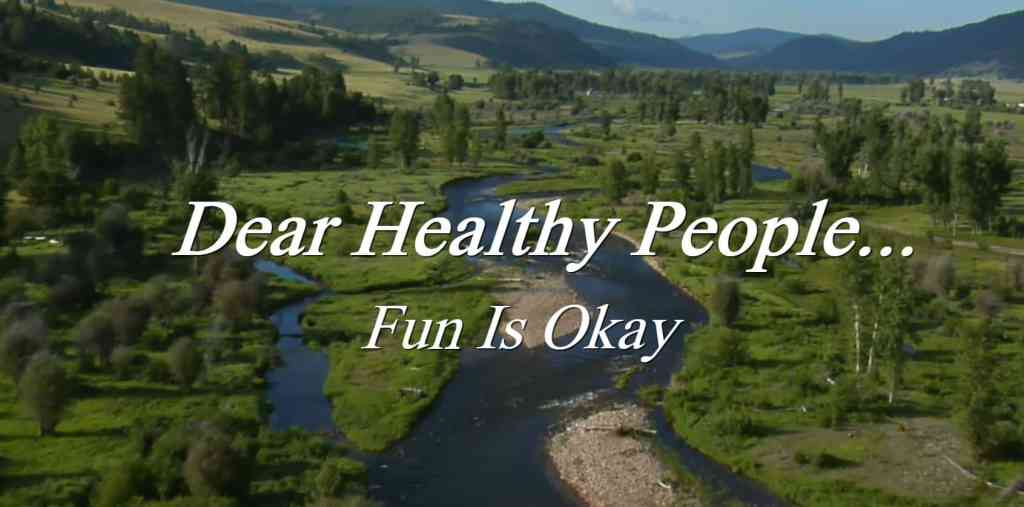 Dear Healthy People - Fun is OK