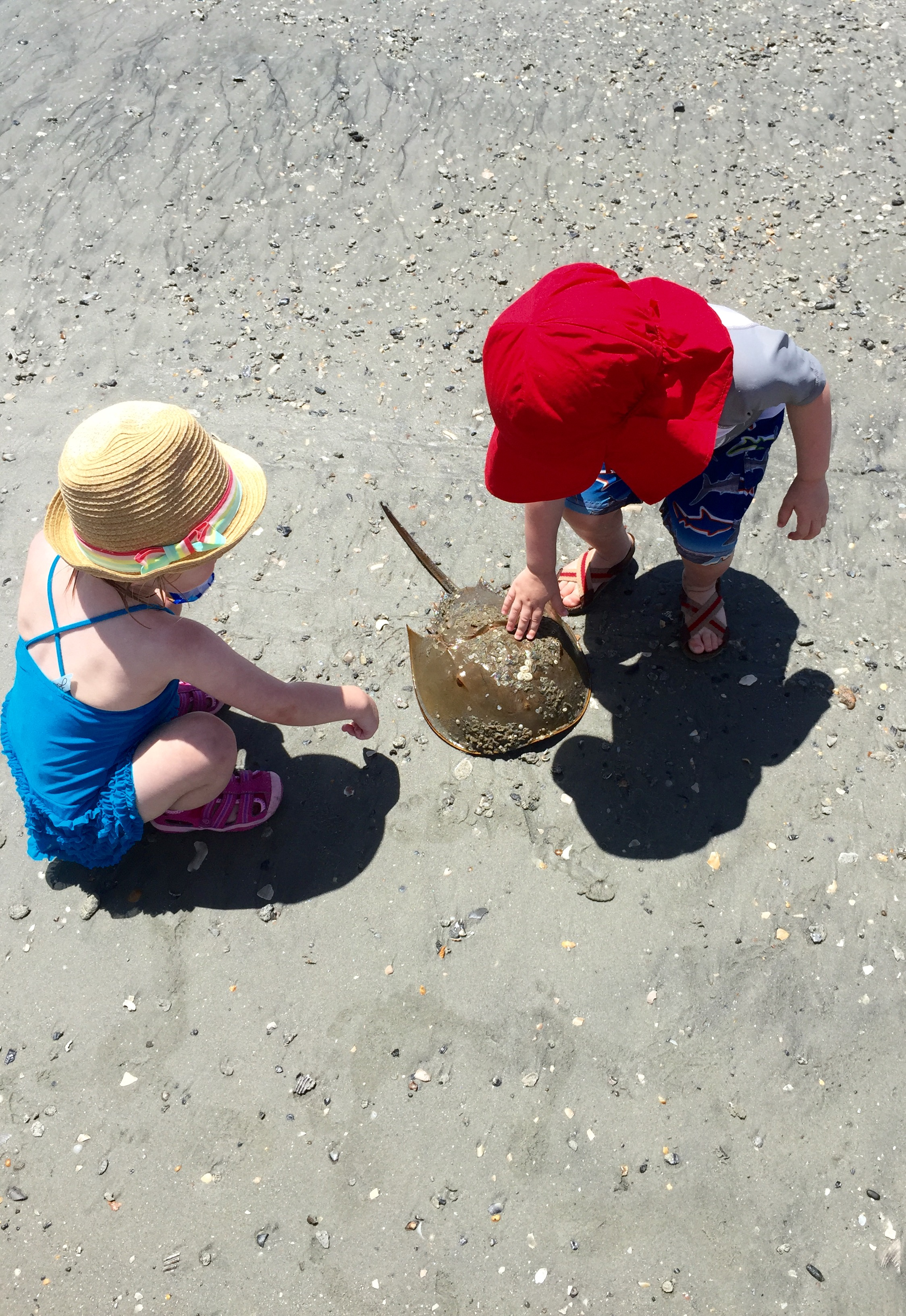 What to Pack for a VRBO Beach Trip With Toddlers