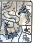Warhammer Age of Sigmar - Stormcast Eternal Dracoth on sprue