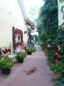 Des allées fleuries et joliment décorées