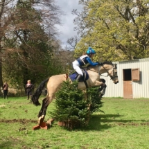 Horse_jumping_training_lesson