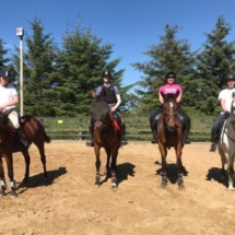 Group Horse Riding Lesson Dublin and Wicklow