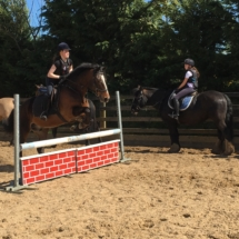 Show_Jumping_Training
