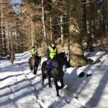 Cross Country Trekking Winter on Horseback