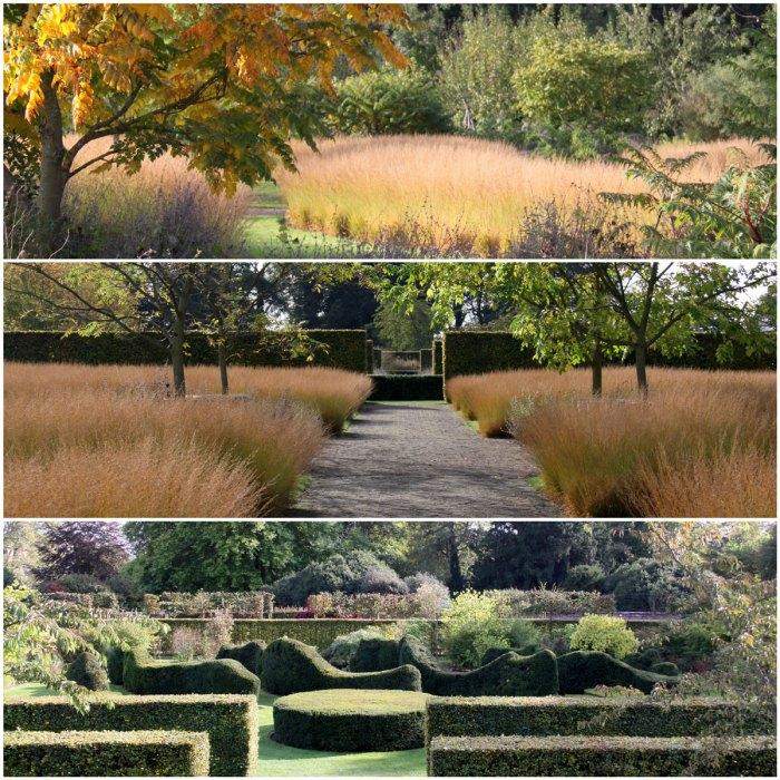Scampston-Hedges