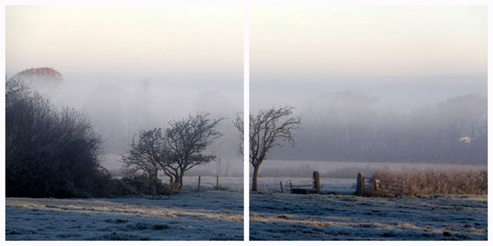 misty-frosty-morning