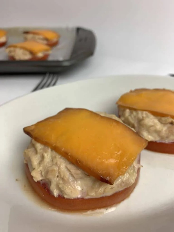 Tomato Tuna Melt (Low Carb, THM-S)