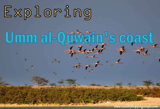 Umm Al-Quwain is undoubtedly UAE's best kept secret!