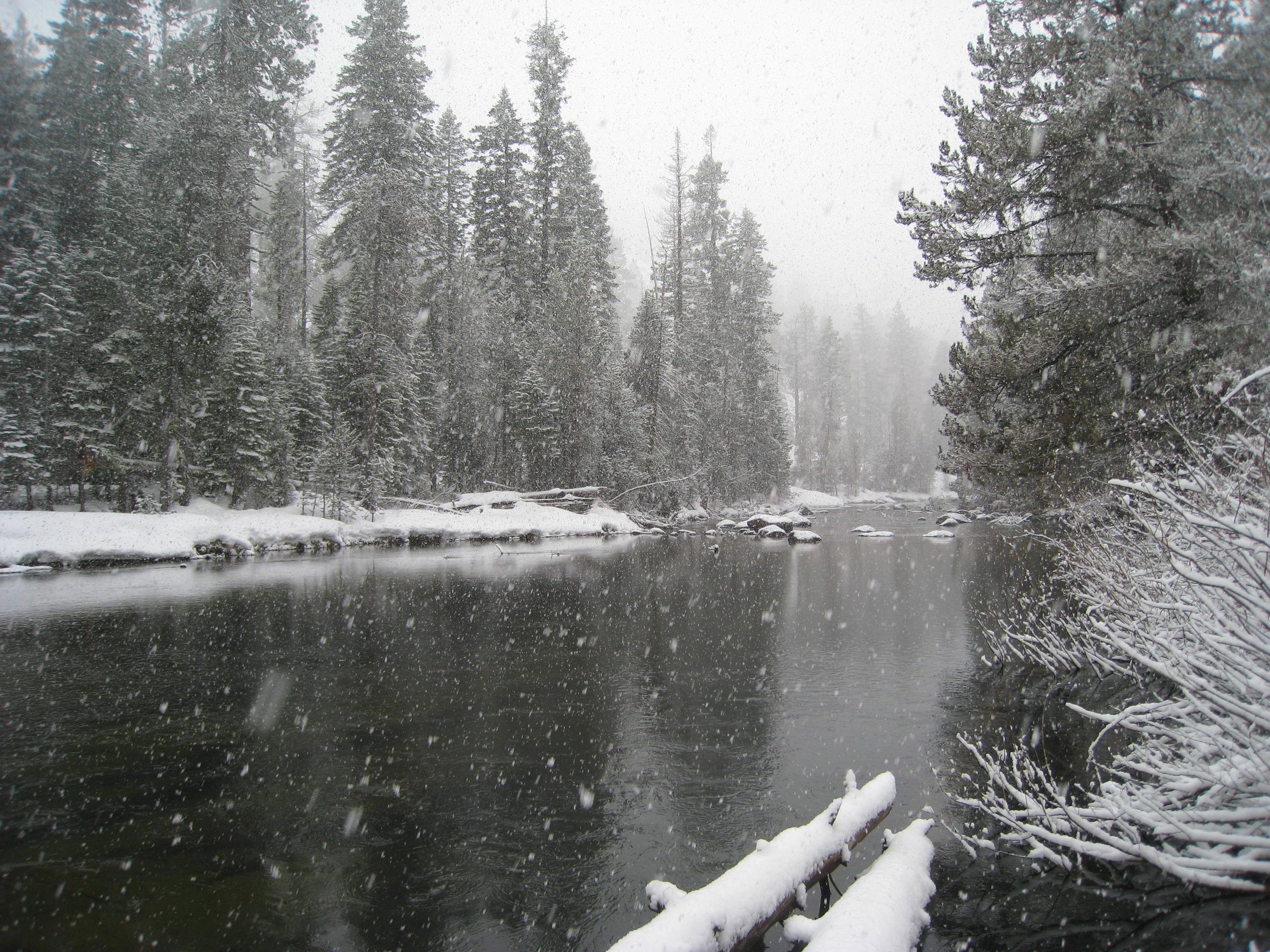 Desktop Wallpaper Falling Snow Winter Wonder Land The Epic Adventures Of Country Kyle