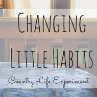 On-Changing-Little-Habits