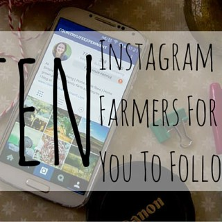 Ten Instagram Farmers For You To Follow