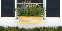 18 colourful gardening ideas for window boxes