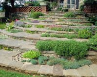 Designing Beautiful Rock Gardens  5 Professional Tips