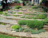 Designing Beautiful Rock Gardens  5 Professional Tips