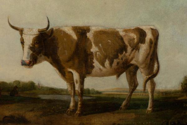 Oil on canvas of cow in landscape c.1800 Closeup Horns