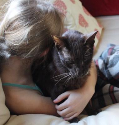 Домашние животные – источник полезных бактерий для человека. Дочка обнимает кота