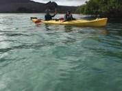 Lagoon kayaking with a playful sea lion