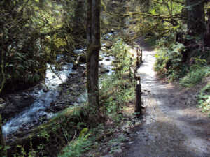 Lower Macleay Trail