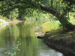 photo of Euclid Creek