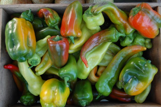 peppers turning