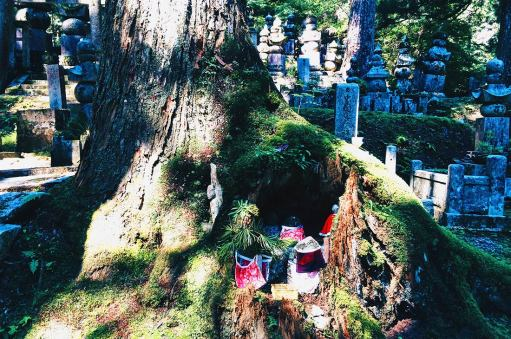 Okunoin Cementery   Koyasan temples Japanese Buddhism Mount Kõya © CoupleofMen.com