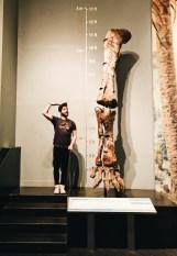 Karl vs. brontosaurus leg bone   Royal Tyrrell Museum Palaeontology Drumheller Alberta Canada © CoupleofMen.com