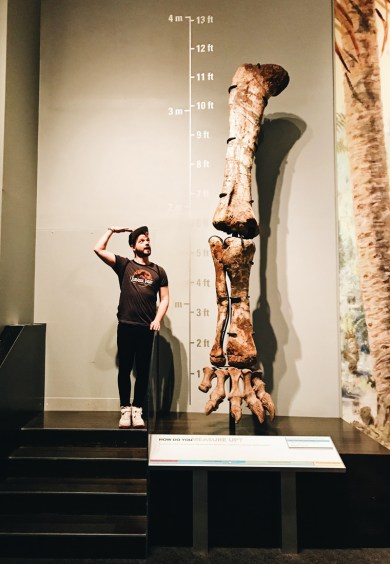 Karl vs. brontosaurus leg bone | Royal Tyrrell Museum Palaeontology Drumheller Alberta Canada © CoupleofMen.com