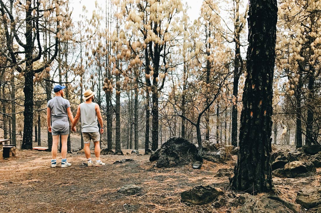 After the bushfires on Gran Canaria | Gay Couple Travel Diary The Cruise 2017 © CoupleofMen.com