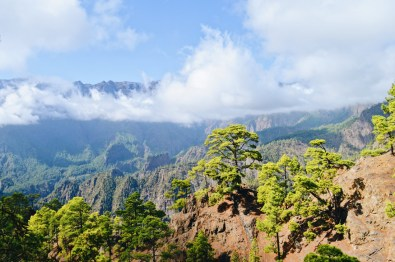View over the Caldera Taburiente on La Palma | Gay Couple Travel Diary The Cruise 2017 © CoupleofMen.com