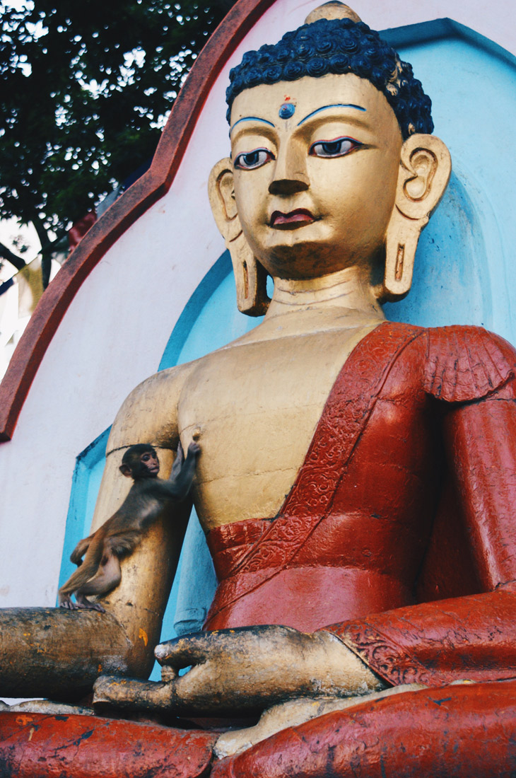 Monkey playing with a Buddhas nipples | Gay Travel Nepal Photo Story Himalayas © Coupleofmen.com