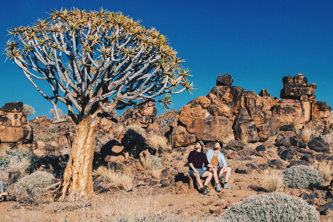 Sitting next to old giants: These special trees called Quiver trees are saving huge amounts of water and are several hundreds of years old © Coupleofmen.com