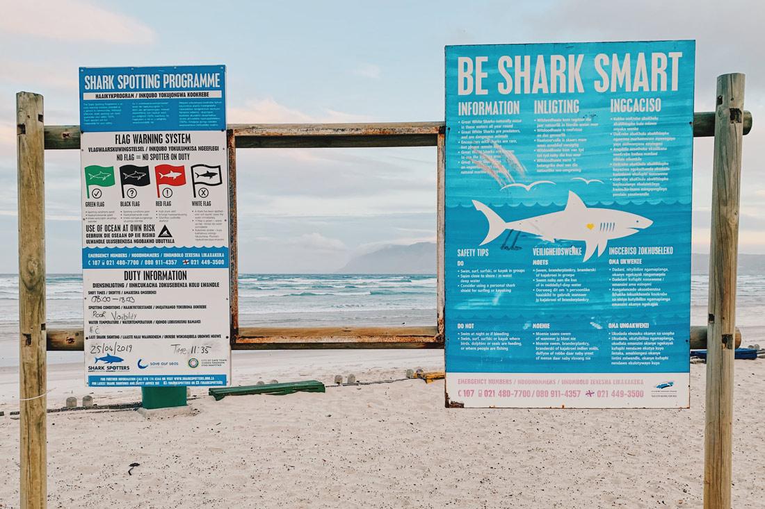 Be Shark Smart - Warning sign at the Muizenberg Beach © Coupleofmen.com