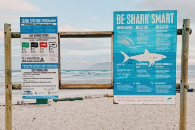 Be Shark Smart - Warning sign at the Muizenberg Beach © Coupleofmen.com