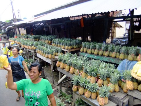Pineapple bonanza, Lombok, Indonesia