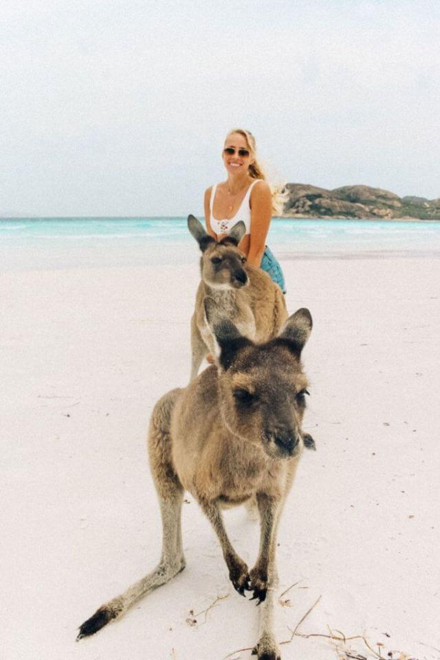 couples coordonne esperance australie occidentale alex à lucky bay avec kangourous