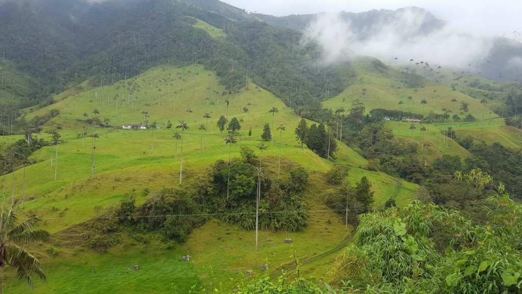 valle-de-cocora-salento-2-weeks-in-colombia