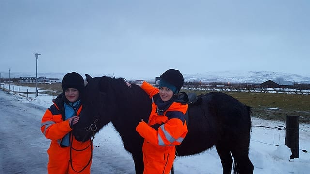 Petting the Icelandic Horse