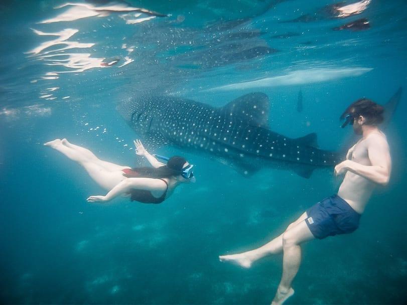Tumalog Falls from Oslob Cebu Whale Sharks