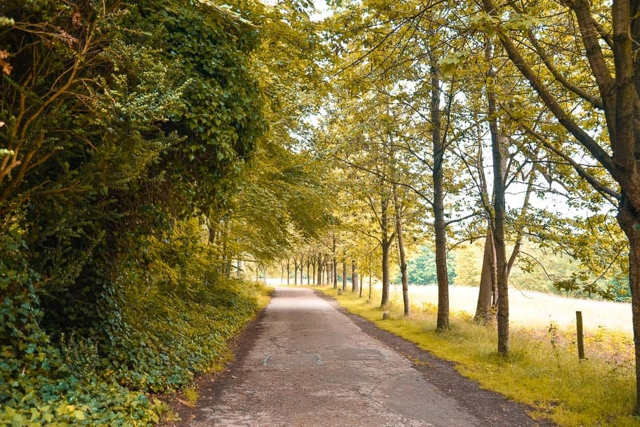 Wandlebury Country Park (A delightful walk in Cambridge, beware of serial killers)