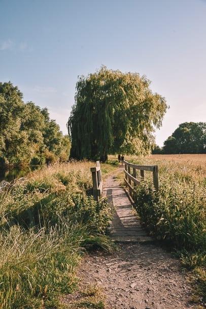 Grantchester-Meadows-Walk-best-walks-Cambridge-uk