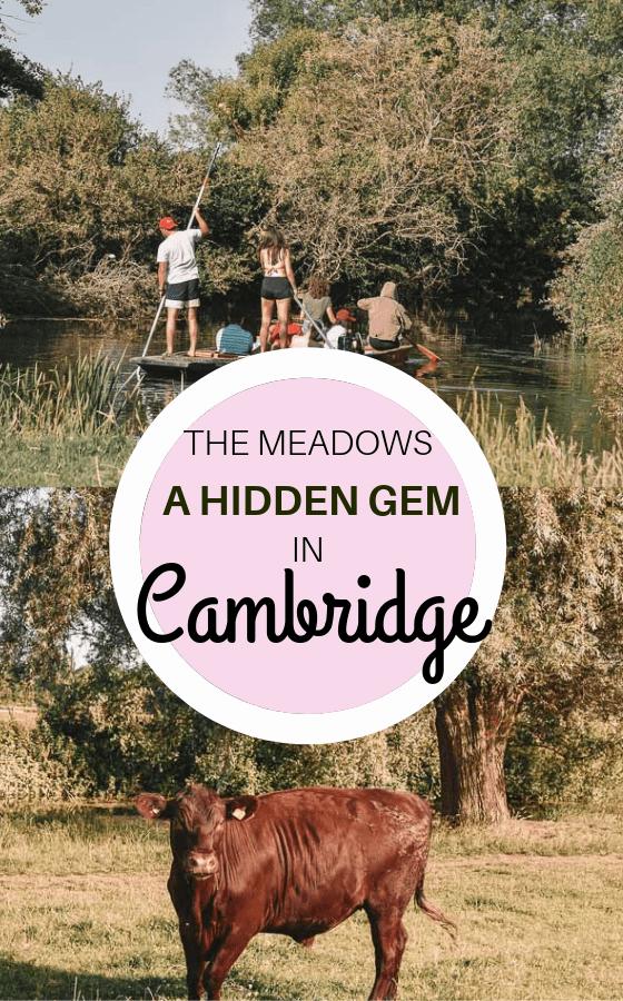 hidden-gem-cambridge