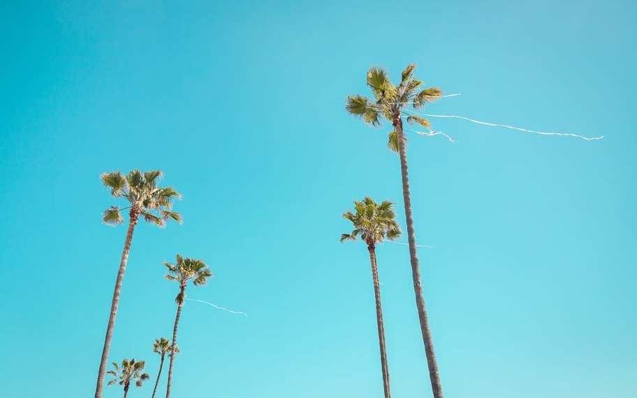 100+ California Quotes for inspiring instagram captions